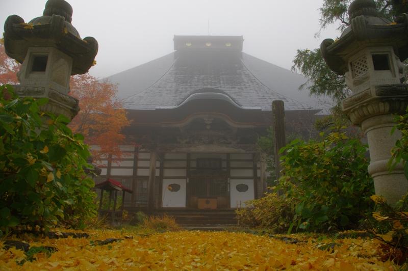 落ち葉のじゅうたんと性乗寺