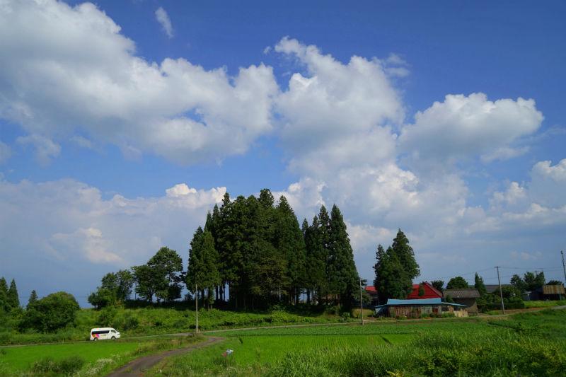 夏らしい雲がでてきました③