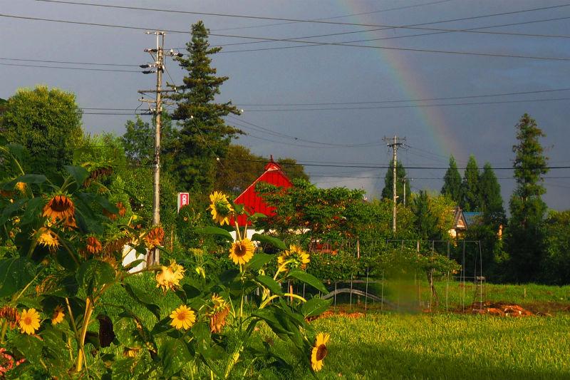 夕立の後の虹(2)