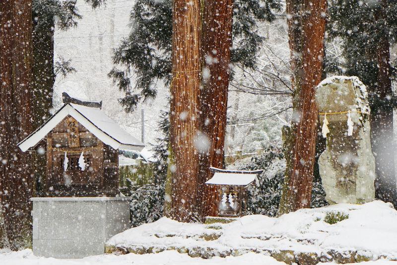 大粒の雪が降ってきました。守田神社(3/4)