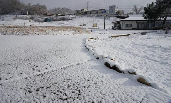 令和初の雪景色暖冬(2/2)